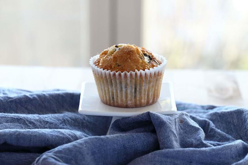 Un muffin de vainilla sobre un plato blanco