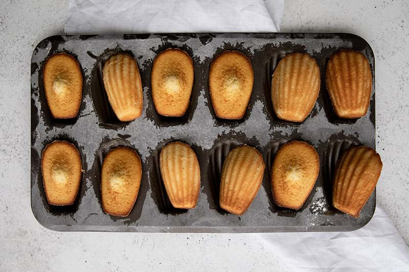 Overhead shot of baked madeleines in the madeleine tin