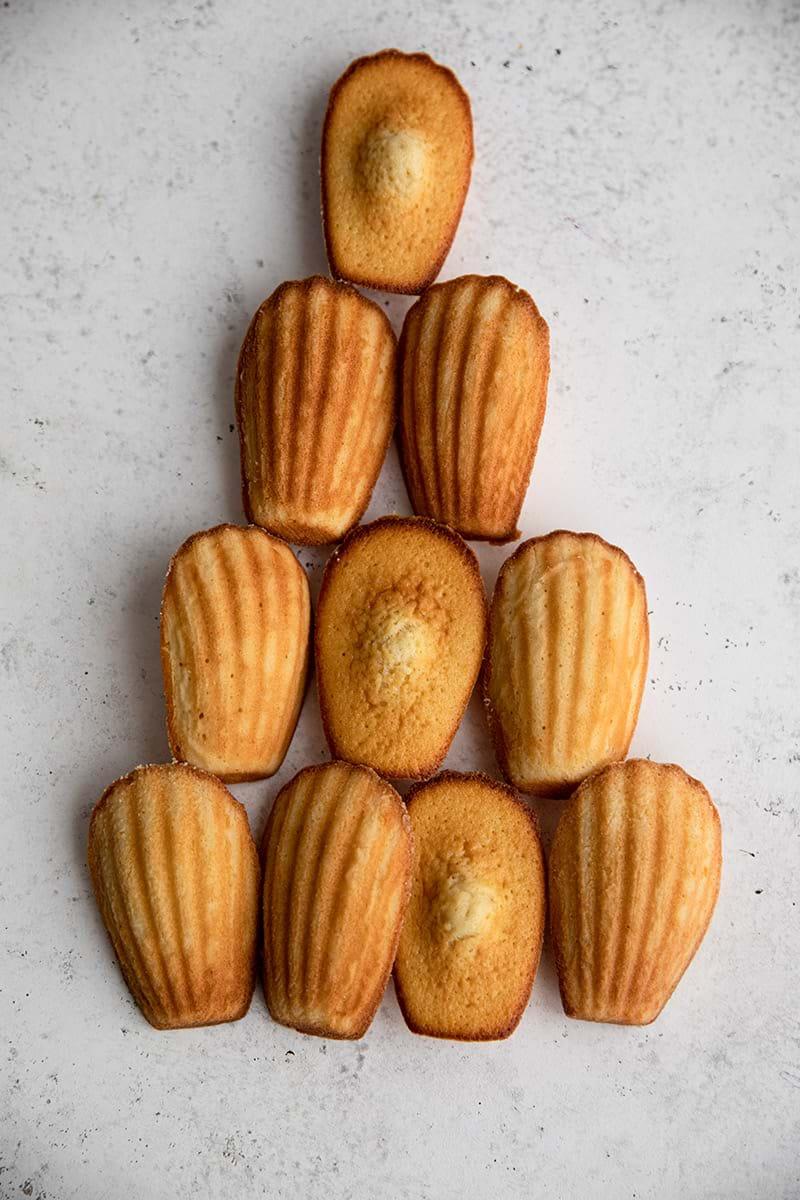 Overhead shot of baked madeleines