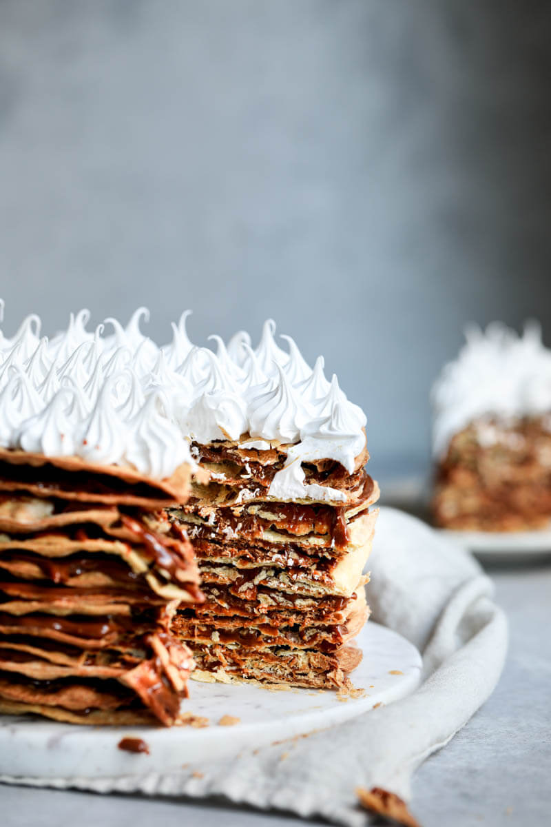 The interior of the rogel cake